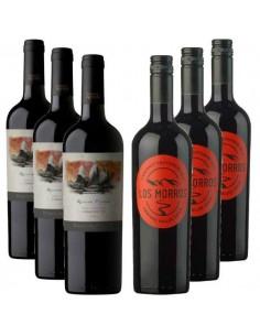 Pack vinos reserva, Los Morros Cabernet, Puente Austral Res Priv Carmenere