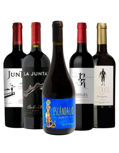 Pack 12 vinos Puente Res Priv Car, Tabali Pedregoso Car, Eno Limited, Meli Vigno, Carnada Red Blend